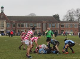 QE's annual Sevens tournament attracts leading schools while the U13s shine at Berkhamsted